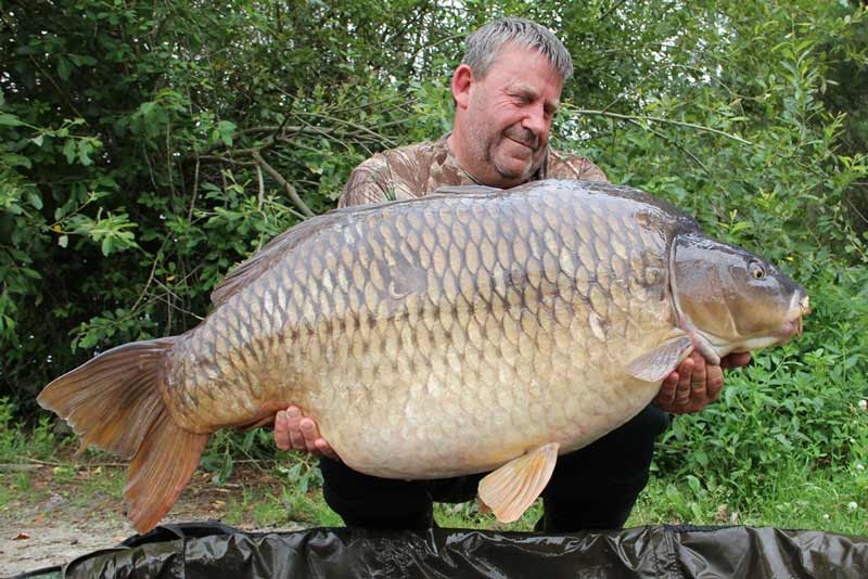 Rainbow Common 72lb 08oz rm tc